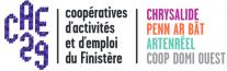 image logo_cae29.png (70.0kB)